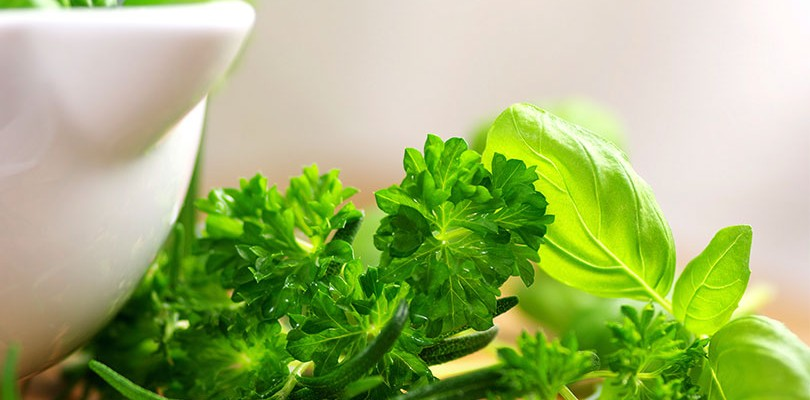 Add Herbs to Your Diet
