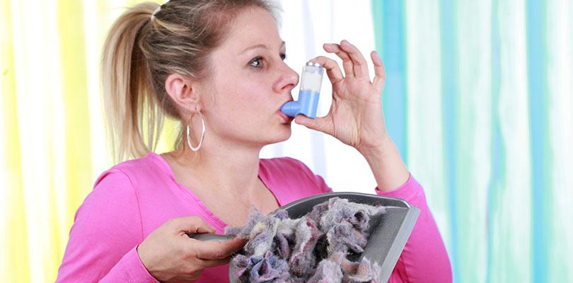 Dust Mite Allergens